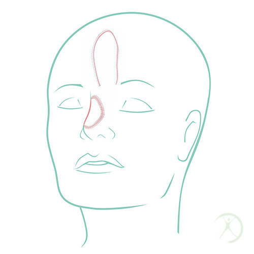 Reconstrução de cabeça e pescoço