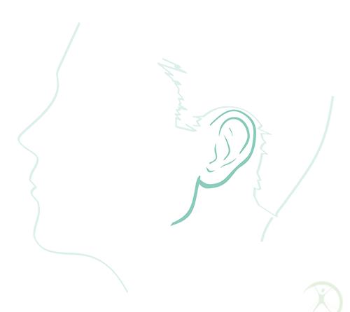 Redução das orelhas