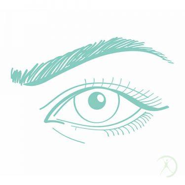 Ilustração: Transplante de Sobrancelhas - Contorno Facial - Cirurgia Estética - Autor: Dr. Fernando Rodrigues